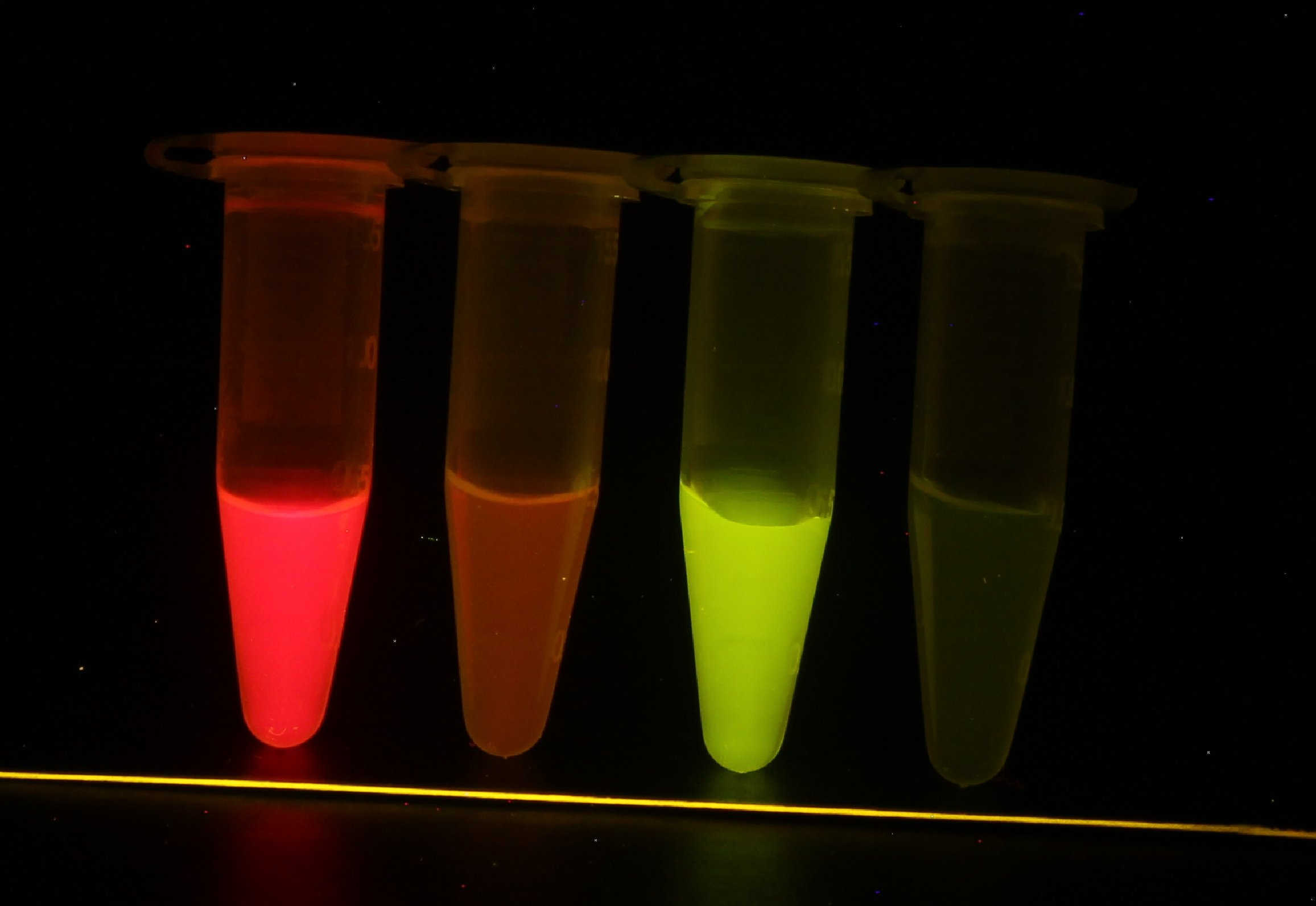 Image of tubes in a row that fluoresce green and red